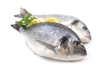 Най-висока е концентрация на йод в морската риба