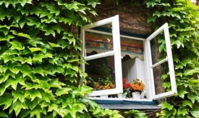 отворен прозорец