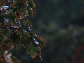 септемврийски дъжд