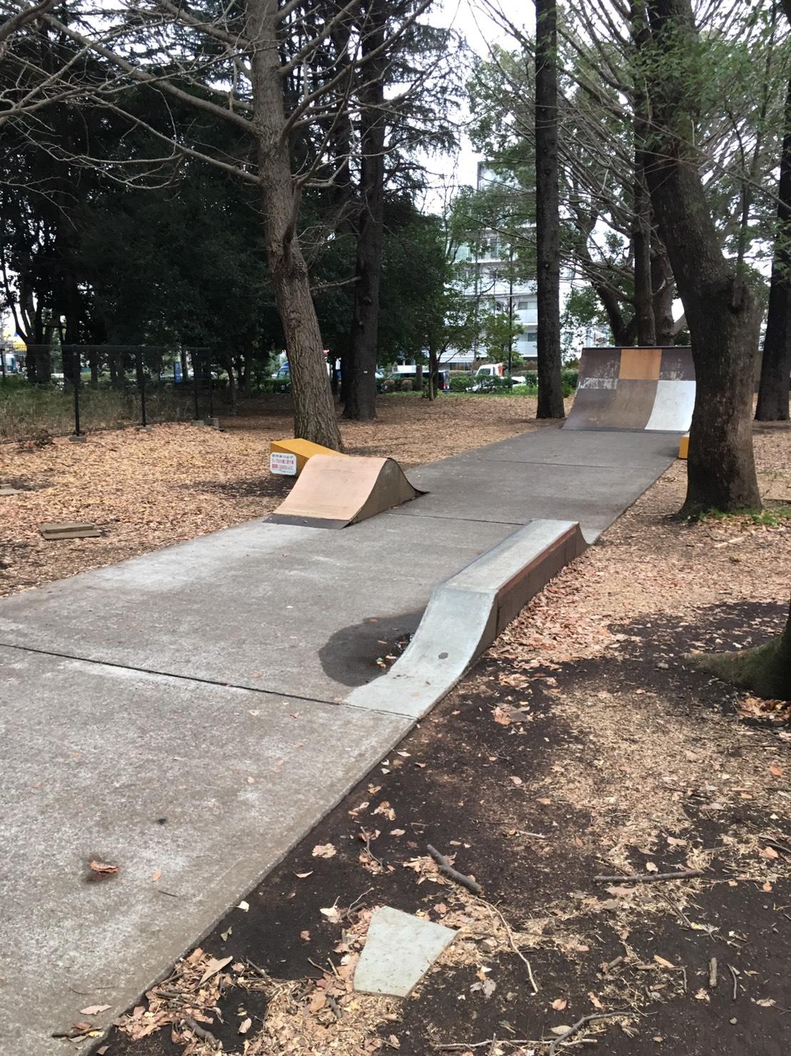 砧公園スケートパーク