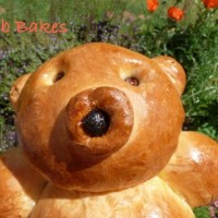 A Bread Bear in Bristol