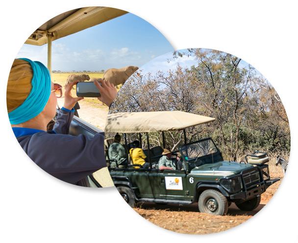 safari section 21 1