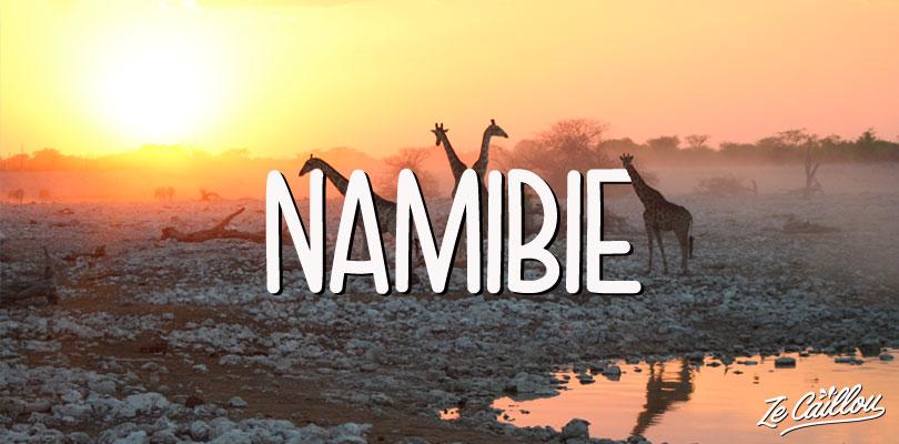 Girafes au parc d'Etosha en Namibie, idée voyage dans le monde par Ze Caillou