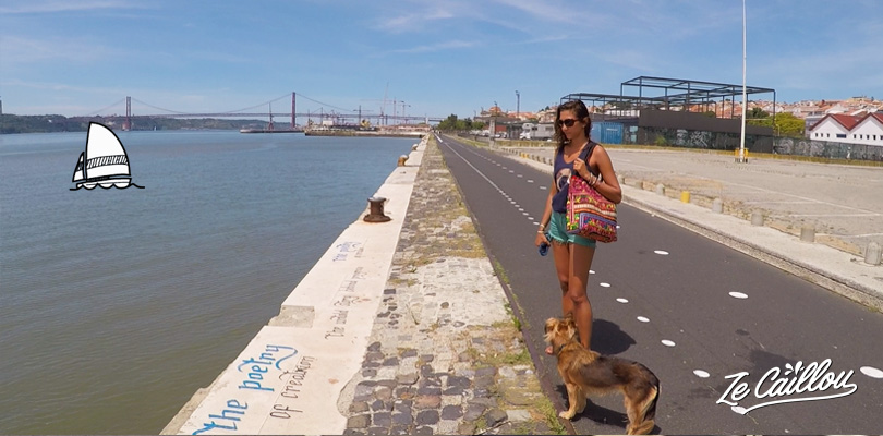 Rent a bicycle or walk along the Taje in Lisbon