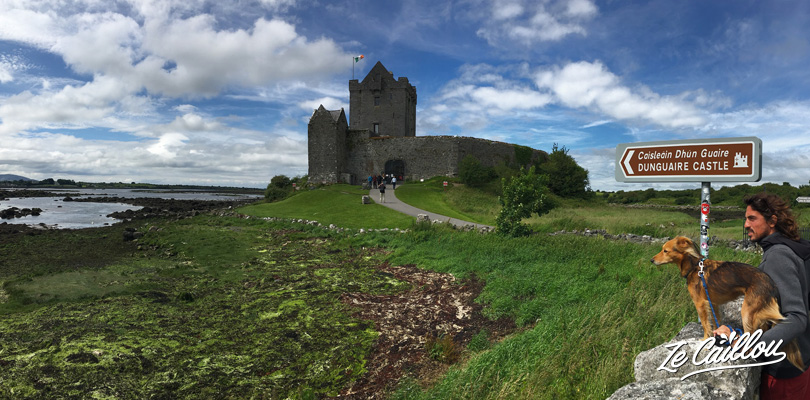 Visit the Dunguaire castel in the Burren region on the way to Galway