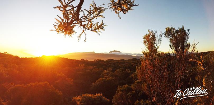 Coucher de soleil à l'aire du Nez de Boeuf sur la route du volcan à la Réunion