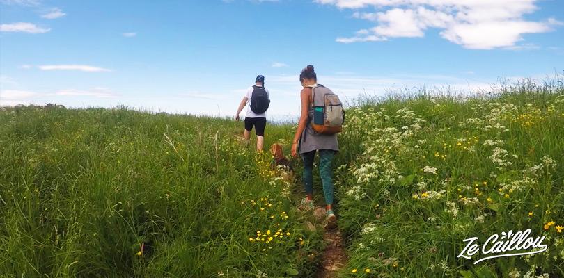 D'abord, on traverse de vertes prairies lors de l'ascension du mont KRN au Sud du parc Triglav.