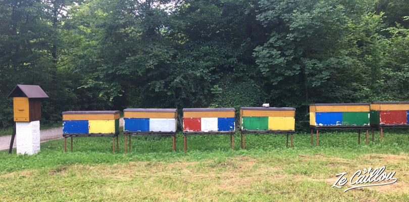 Les ruches sont colorées en Slovénie, vous en verrez un peu partout.