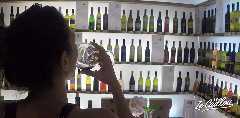 La Vinoteka à l'office de tourisme de Vipava, région du vin en Slovénie.
