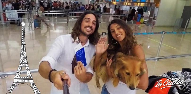 Ca y est, nous sommes prêts à voyager en avion avec un animal et son passeport.