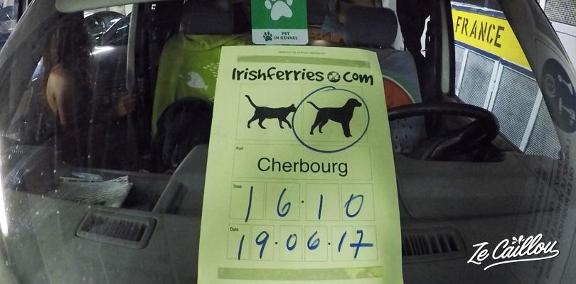 Tout ce qu'il faut savoir pour prendre le ferry avec un chien en Europe.