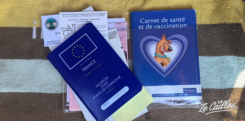 You need your dog'seuropean passport to take a ferry in Europe with an animal.