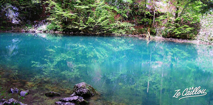 Discover the Kupa river during a roadtrip in Croatia in campervan