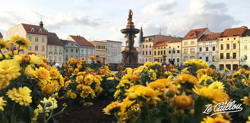 Samson fountain on the Premisl Otakar square in Cesky Budejovice