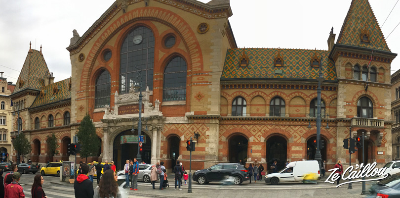 Budapest central market and its facade made with red bricks.