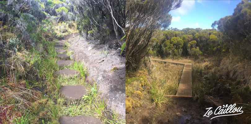 Des aménagements pour éviter la boue lors de la journée Cilaos Bourg Murat du GRR2.
