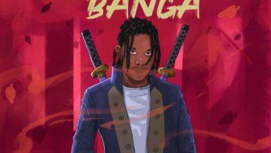 Tim - Mwishile Banga Mp3