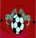 Lumwana Radiants Football Club 4