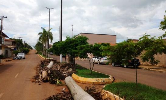 Palmeiras_Nova Tucuruí (2) (1)