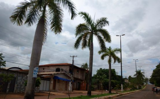 Palmeiras_Nova Tucuruí (3) (1)