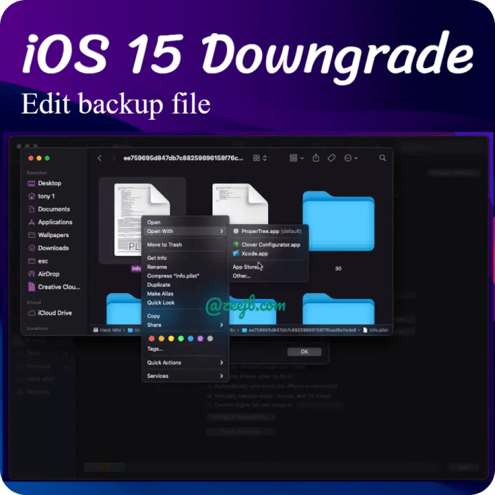 Edit backup file to further restoration process, iOS 15 downgrade in to iOS 14