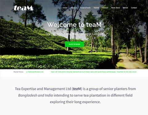 Tea Expertise and Management Ltd (teaM)