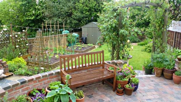 my garden. spring rain.
