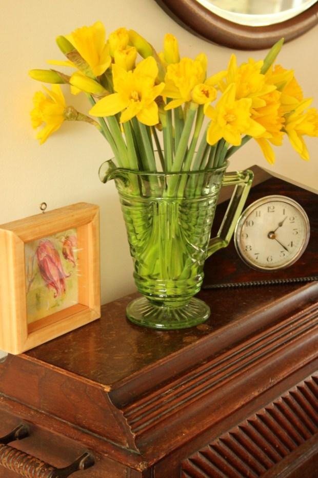 First daffs-playing with camera