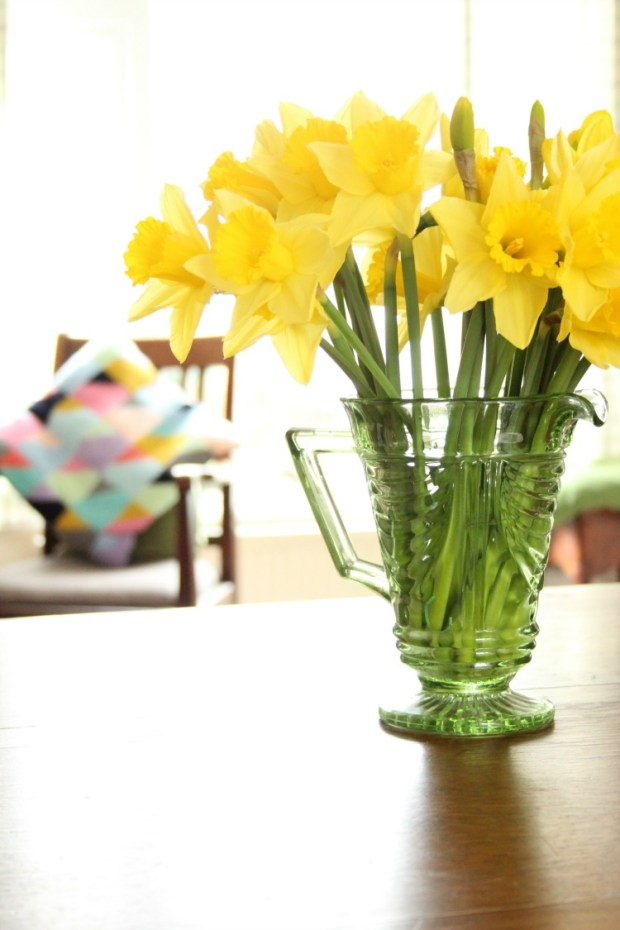 i-love-this-picture-daffodils-with-my-crochet-cushion