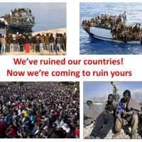 Migranten gedachten en bedoelingen blootgelegd, het is broodnodige verrijking volgens onze elite