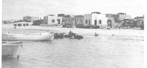 tantura-19352