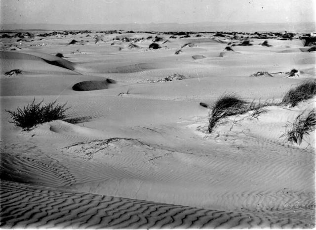 חולות עמק חפר שנרכשו על ידי הקרן הקיימת 1930