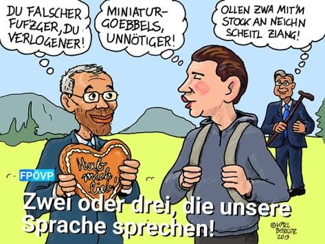 Gemeinsames FPÖ-ÖVP-Wahlplakat