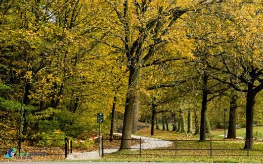 wandelpad Landgoed de Breul