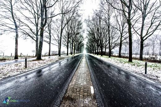 Winter in Zeist. Sneeuw op de koelaan