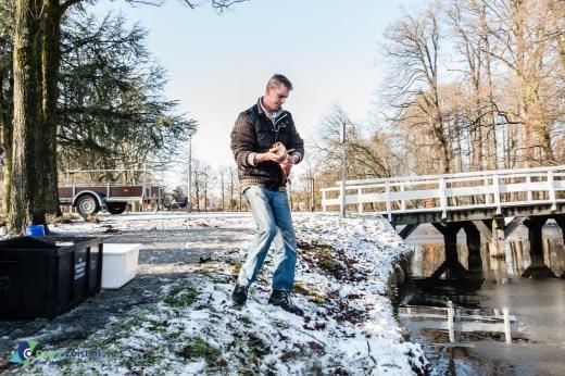 Zeister Hengelaars Vereniging zet 55 franse karpers uit in de slotvijver.