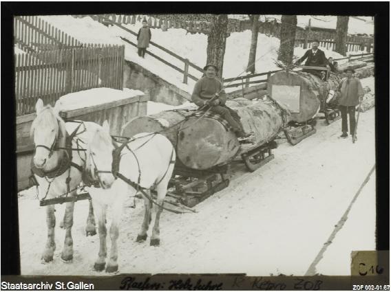 Holztransport mit Pferden im Winter, zwischen 1901 und 1919