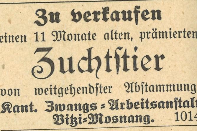 Anzeige im St.Galler Bauer