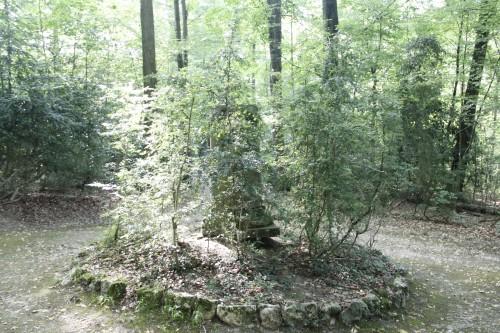 Hexenwald mit Säule 3 Kopie