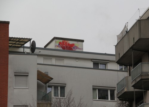 Baerwarts Gässli Dach