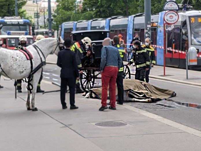 Fiakerpferd verendet auf Wiener Ringstraße