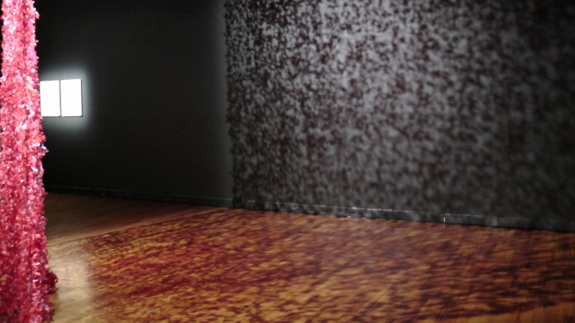 The shadows cast by Rouge Baleri by Arlette Vermeiren Zucoli