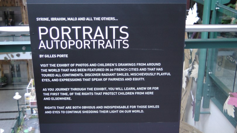 Wall panel explaining what the exhibit is about.