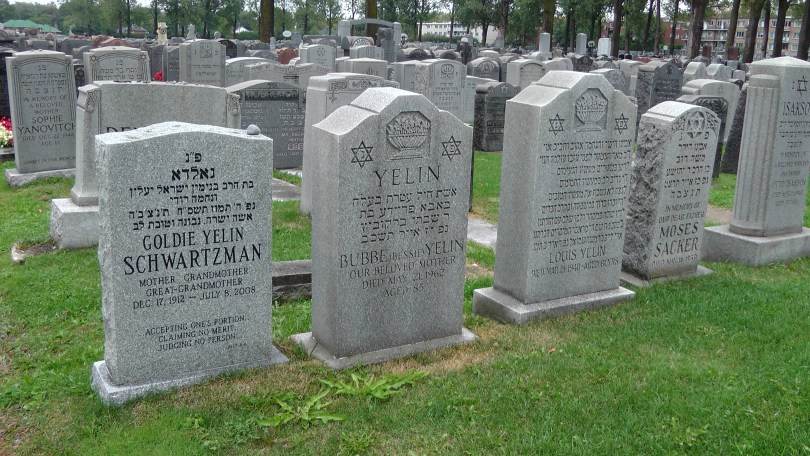 A bunch of monuments at The Baron de Hirsch Cemetery