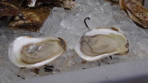 Oysters from Curtis Vargo.