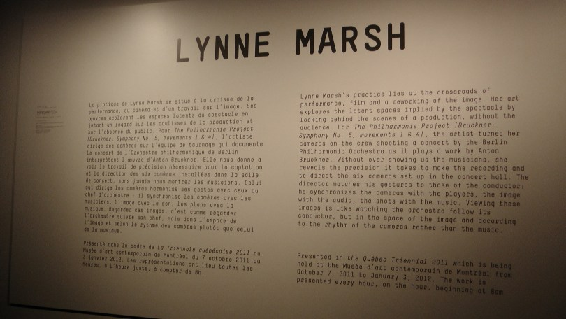 Really Large Wall Tag for Lynne Marsh's The Philharmonie Project (Bruckner: Symphony No. 5, movements 1 & 4)