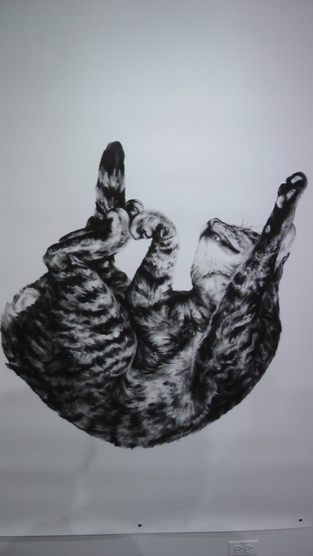 "Kate Puxley: Animals in the City: Gatto Italiano #3, Charcoal on Paper, approx 85"" x 52"""