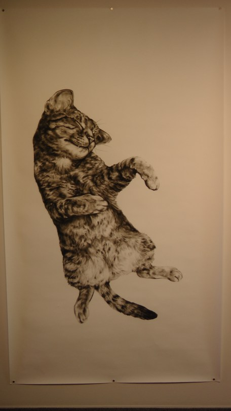 """Kate Puxley: Animals in the City: Gatto Italiano #1, Charcoal on Paper, approx 85"""" x 52"""""""