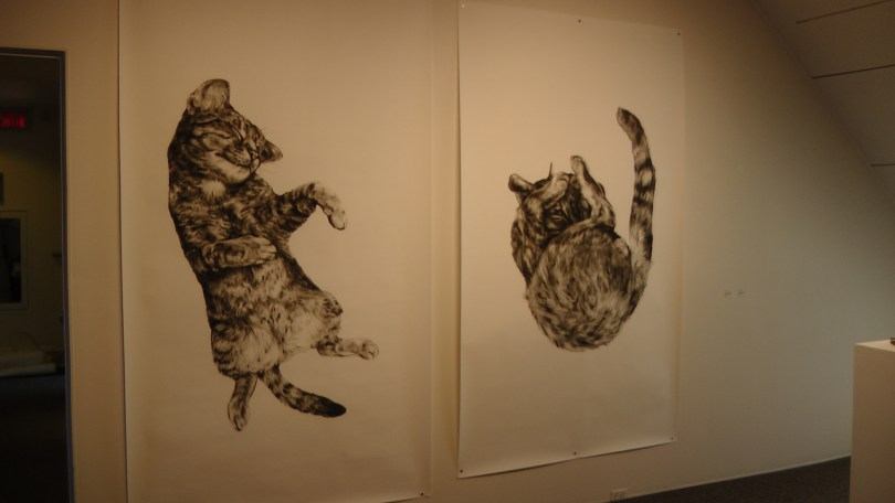 """Kate Puxley, Animals in the City: Gatto Italiano #1 & #2, charcoal on paper. approx 85"""" x 52"""""""