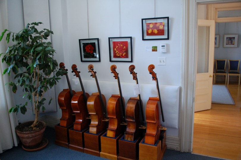Installation view of Jean Fitzgerald's work in Présence in the Cello room of Wilder and Davis.